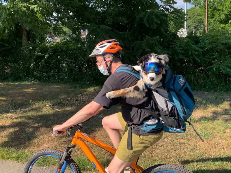 Riding about Town with a Friend