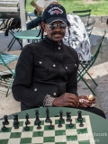 Chess Hustle